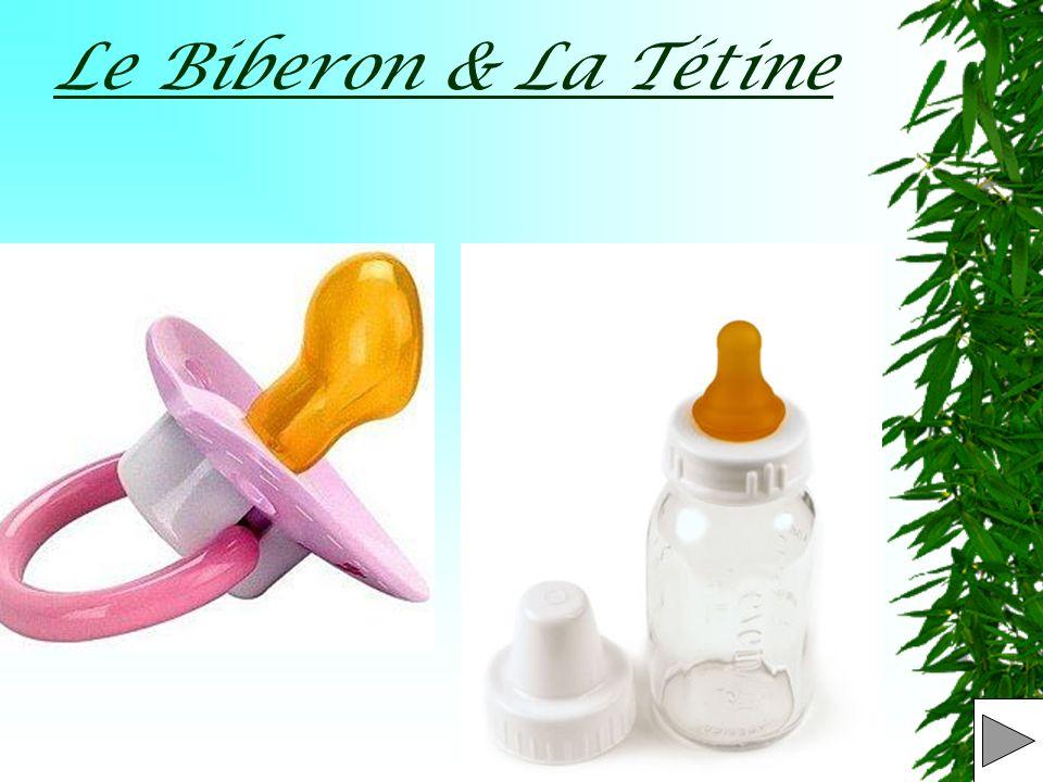 OBJET : Le Biberon et la tétine T.B. – E.D. D.P.6 (Découverte Professionnelle 6h)