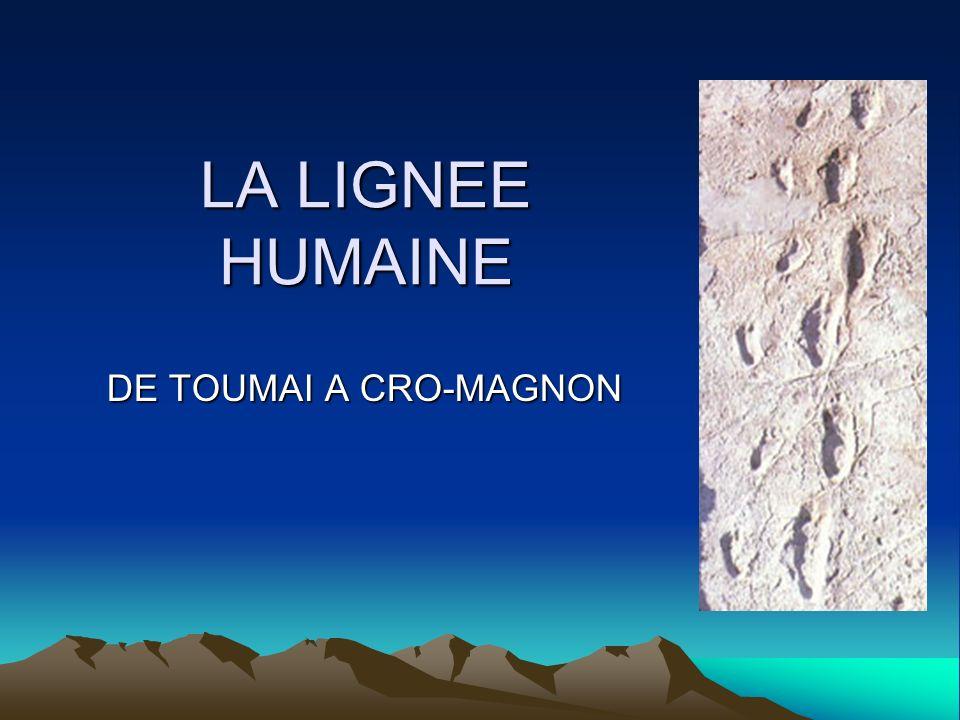 LA LIGNEE HUMAINE DE TOUMAI A CRO-MAGNON