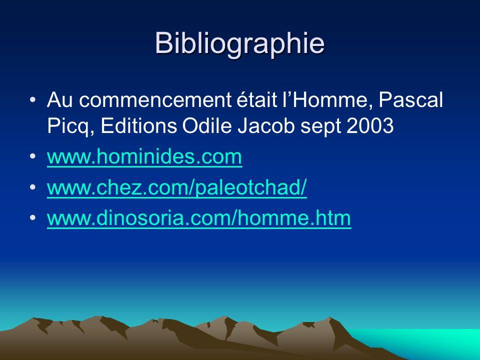 Bibliographie Au commencement était lHomme, Pascal Picq, Editions Odile Jacob sept 2003 www.hominides.com www.chez.com/paleotchad/ www.dinosoria.com/h