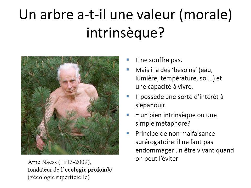 Un arbre a-t-il une valeur (morale) intrinsèque? Il ne souffre pas. Mais il a des besoins (eau, lumière, température, sol…) et une capacité à vivre. I