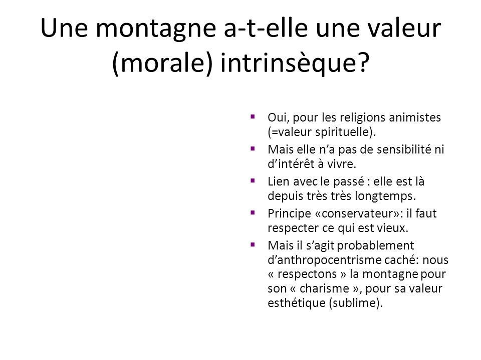 Une montagne a-t-elle une valeur (morale) intrinsèque? Oui, pour les religions animistes (=valeur spirituelle). Mais elle na pas de sensibilité ni din
