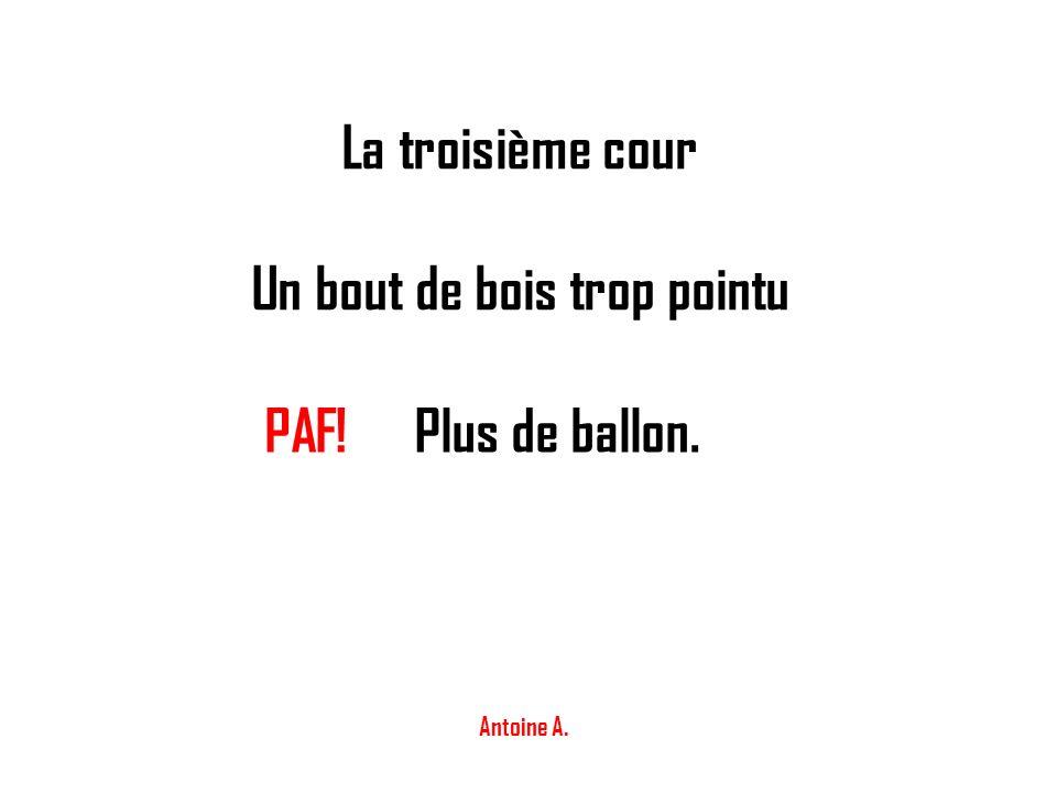 La troisième cour Un bout de bois trop pointu PAF!Plus de ballon. Antoine A.