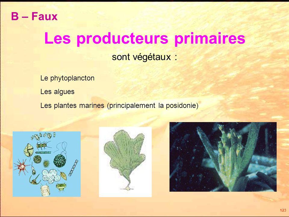 123 Les producteurs primaires Le phytoplancton sont végétaux : Les algues Les plantes marines (principalement la posidonie) B – Faux