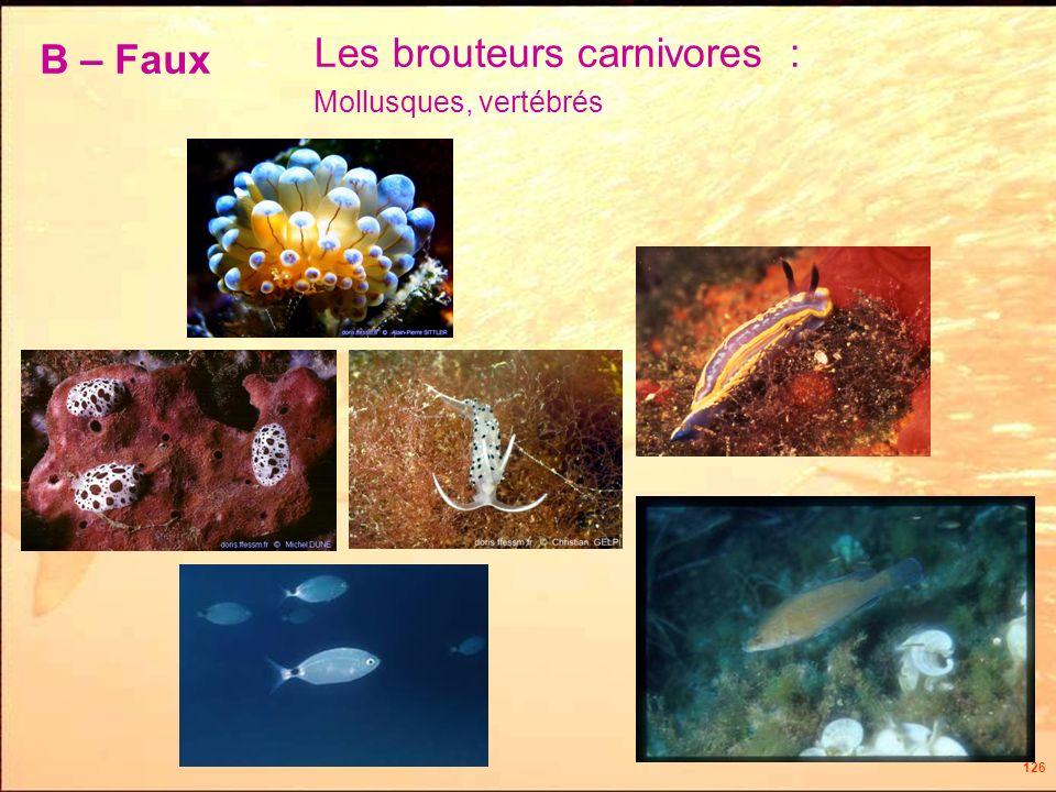 126 Les brouteurs carnivores : Mollusques, vertébrés B – Faux