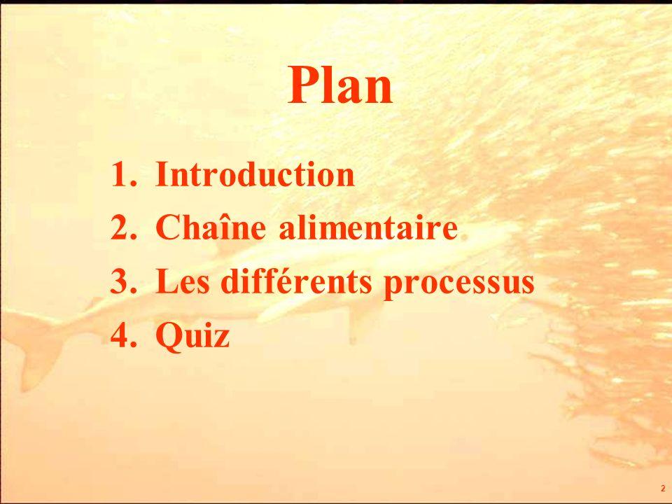 2 Plan 1.Introduction 2.Chaîne alimentaire 3.Les différents processus 4.Quiz