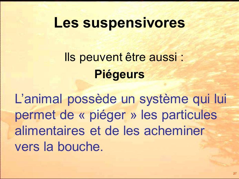 27 Ils peuvent être aussi : Piégeurs Les suspensivores Lanimal possède un système qui lui permet de « piéger » les particules alimentaires et de les acheminer vers la bouche.