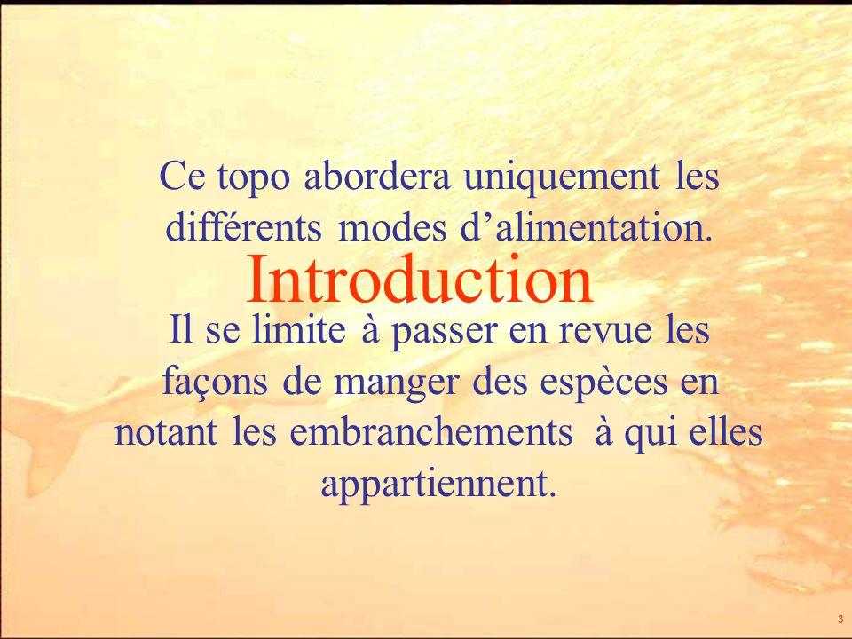 3 Introduction Ce topo abordera uniquement les différents modes dalimentation.