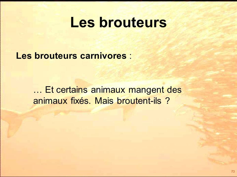 73 Les brouteurs Les brouteurs carnivores : … Et certains animaux mangent des animaux fixés.