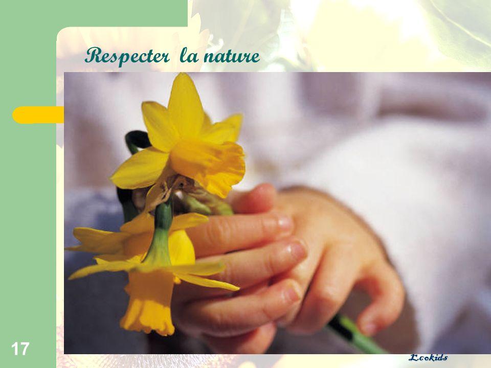 Ecokids 17 Respecter la nature