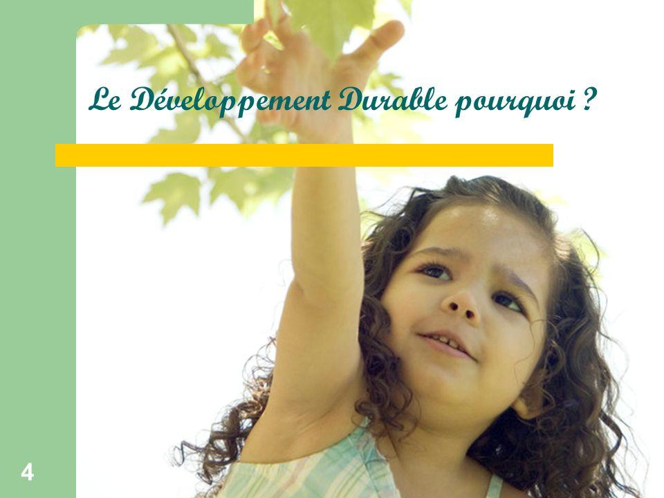 Ecokids 4 Le Développement Durable pourquoi ?