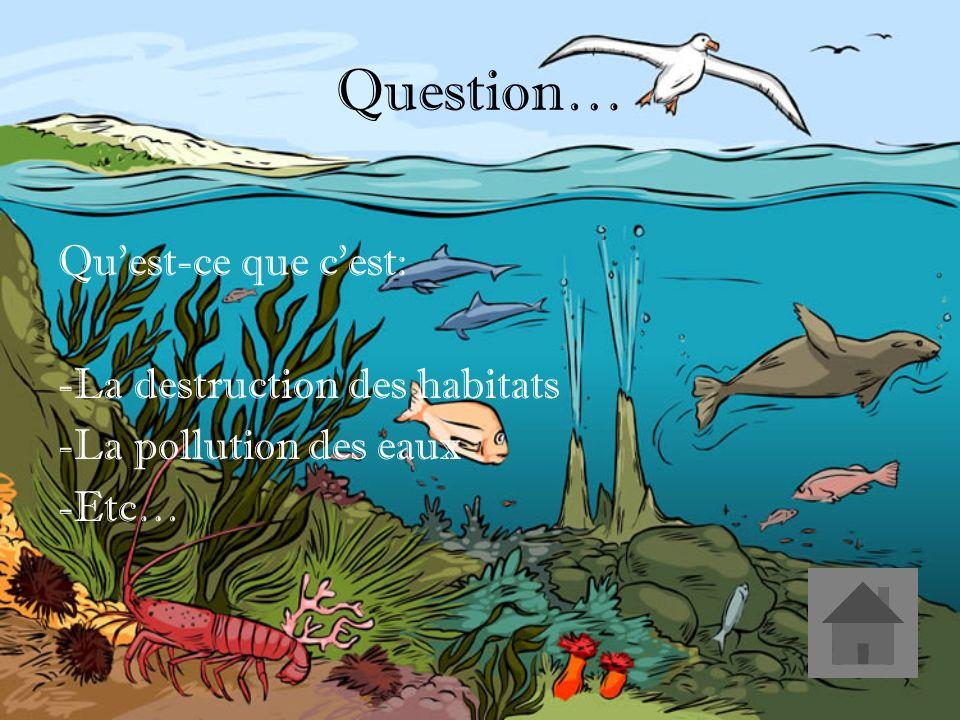 Réponse… Les impacts environnementaux des barrages. (2)