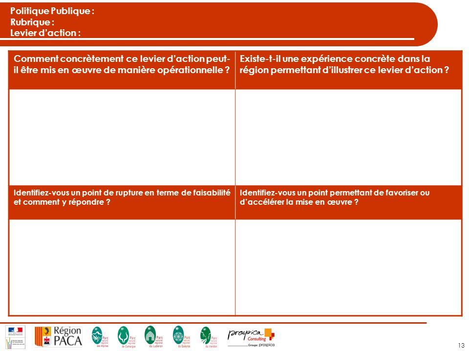 13 Politique Publique : Rubrique : Levier daction : Comment concrètement ce levier daction peut- il être mis en œuvre de manière opérationnelle .