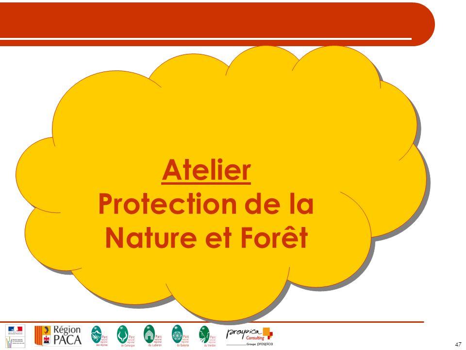 47 Atelier Protection de la Nature et Forêt Atelier Protection de la Nature et Forêt