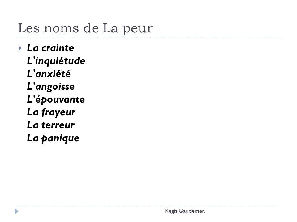 Les noms de La peur La crainte L'inquiétude L'anxiété L'angoisse L'épouvante La frayeur La terreur La panique Régis Gaudemer.
