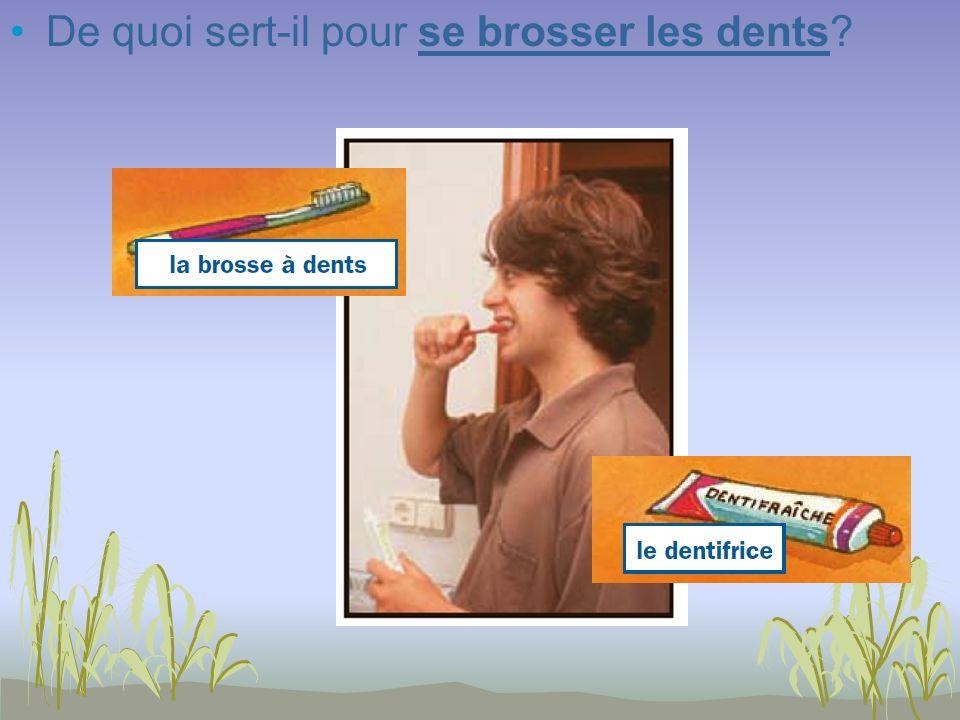 De quoi sert-il pour se brosser les dents?