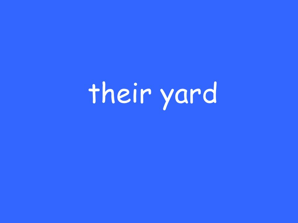 their yard