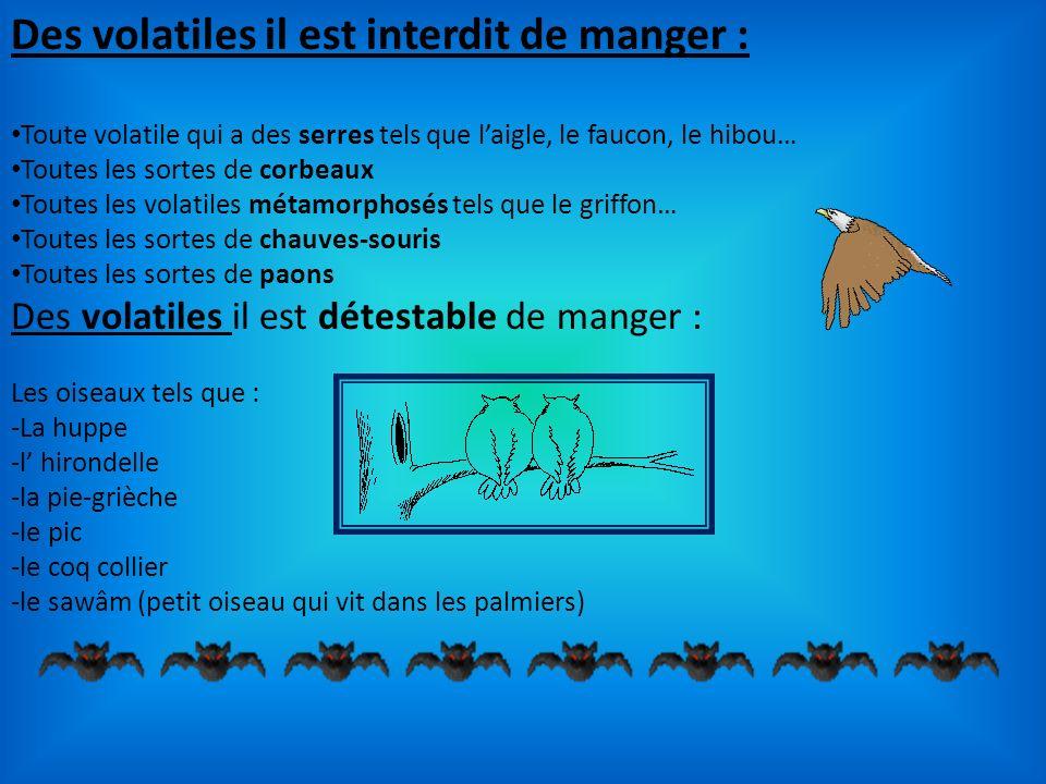 Des volatiles il est interdit de manger : Toute volatile qui a des serres tels que laigle, le faucon, le hibou… Toutes les sortes de corbeaux Toutes l