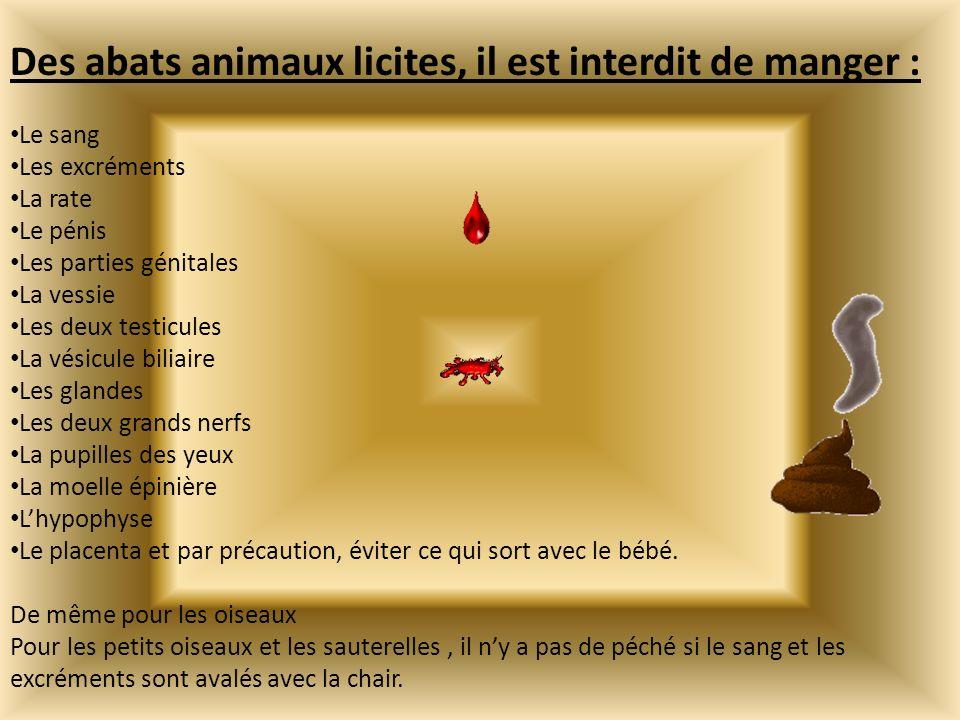 Des abats animaux licites, il est interdit de manger : Le sang Les excréments La rate Le pénis Les parties génitales La vessie Les deux testicules La