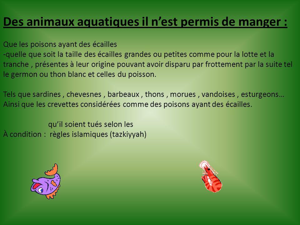 Des animaux aquatiques il nest permis de manger : Que les poisons ayant des écailles -quelle que soit la taille des écailles grandes ou petites comme