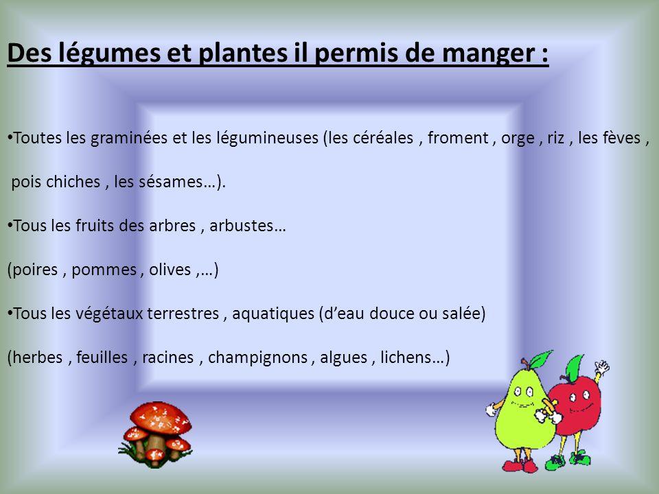 Des légumes et plantes il permis de manger : Toutes les graminées et les légumineuses (les céréales, froment, orge, riz, les fèves, pois chiches, les