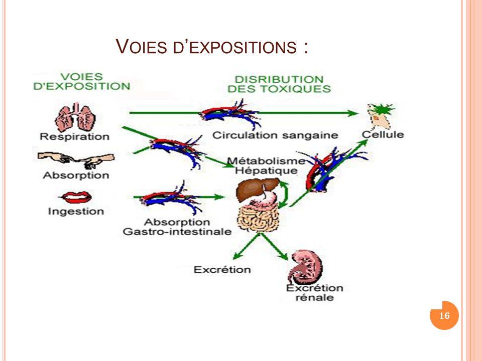 V OIES D EXPOSITIONS : 16