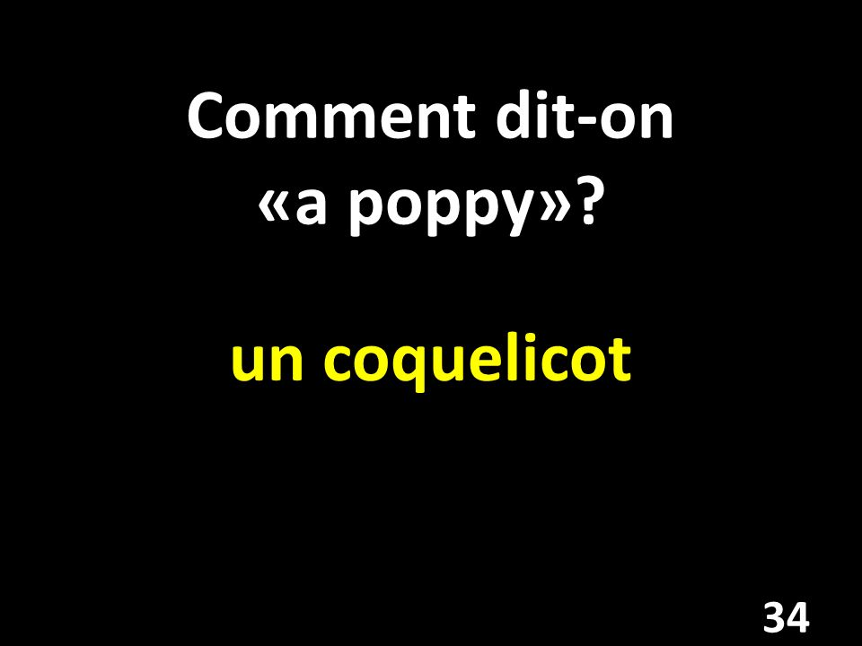 Comment dit-on «a poppy»? un coquelicot 34