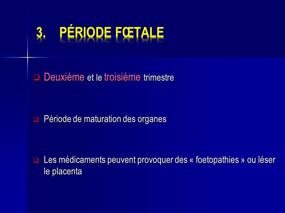 Deuxième et le troisième trimestre Deuxième et le troisième trimestre Période de maturation des organes Période de maturation des organes Les médicame