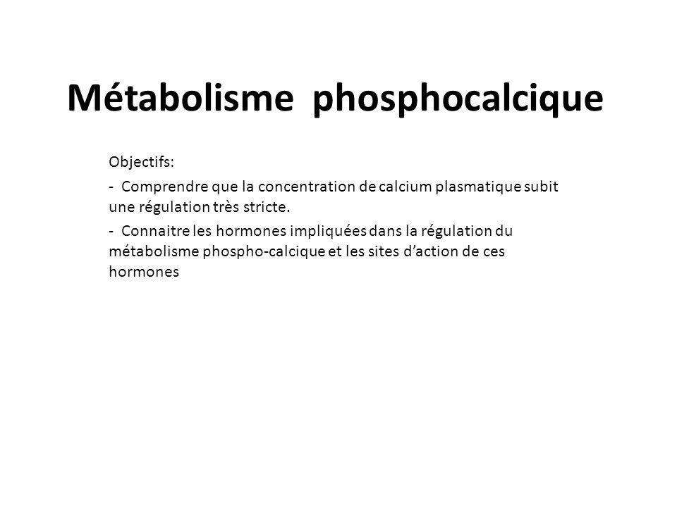 Réserves phospho-calciques Le calcium et le phosphore sont les constituants principaux de los et représentent 65% de la masse osseuse.