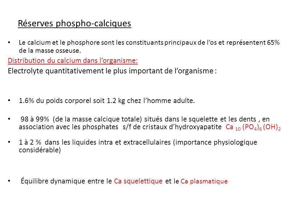 Compartiment extracellulaire Intérêt physiologique 85 % sous forme dhydroxyapatite comme P i dans les os, rôle structural.