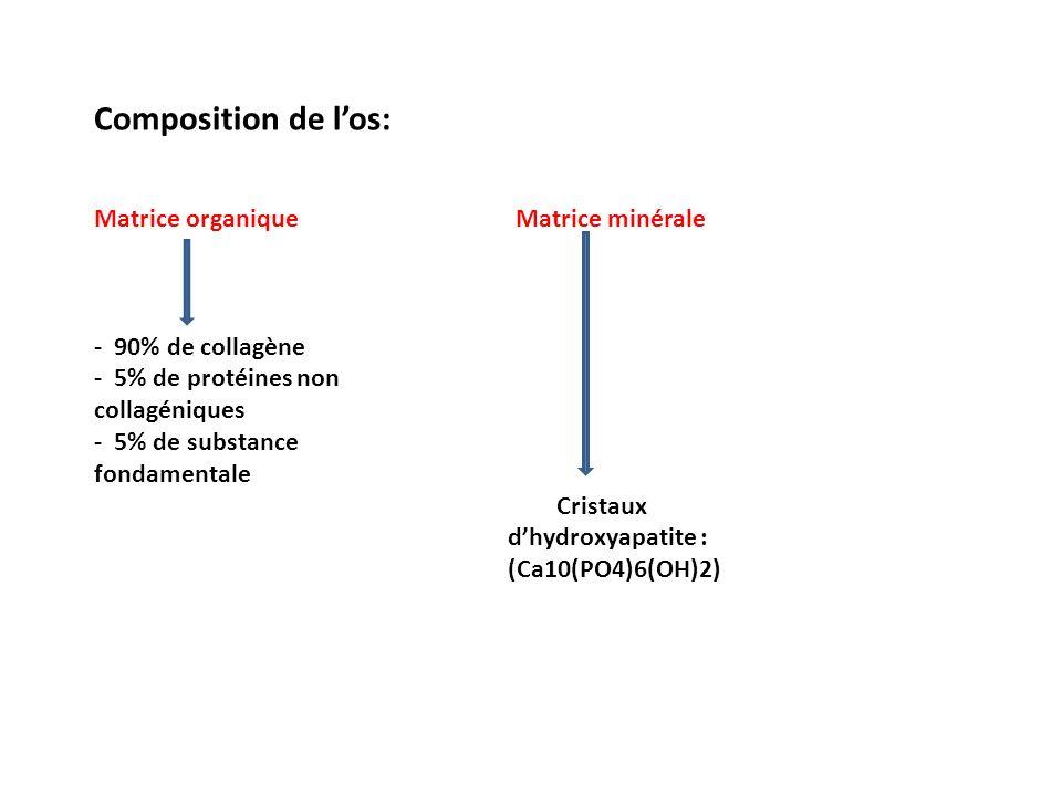 Vitamine D= anti-rachitique = 1-25 (OH)2 D3.