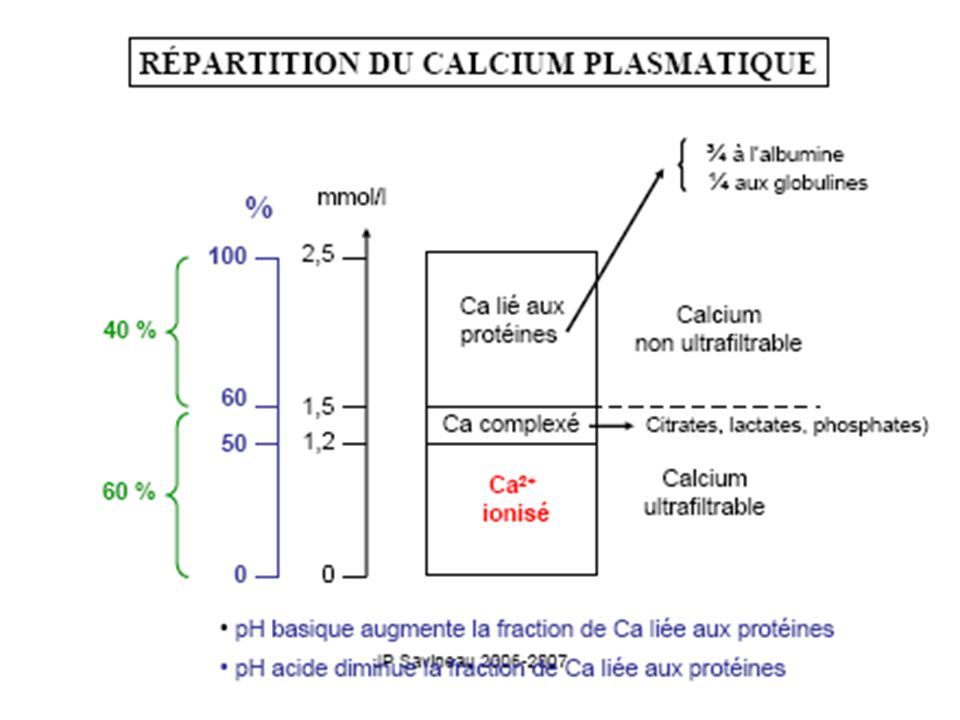 Calcium total lié aux protéines ( 45%) Protéines : albumine 30% globuline 10% Non diffusible, non ultrafiltrable par le rein,donc pas dans lurine (ne traverse pas la membrane glomérulaire à moins de rein défectueux)(molécule trop grosse) Varie avec la [ protéines] : affecte la [Ca total] mais naffecte pas la [Ca ionisé]