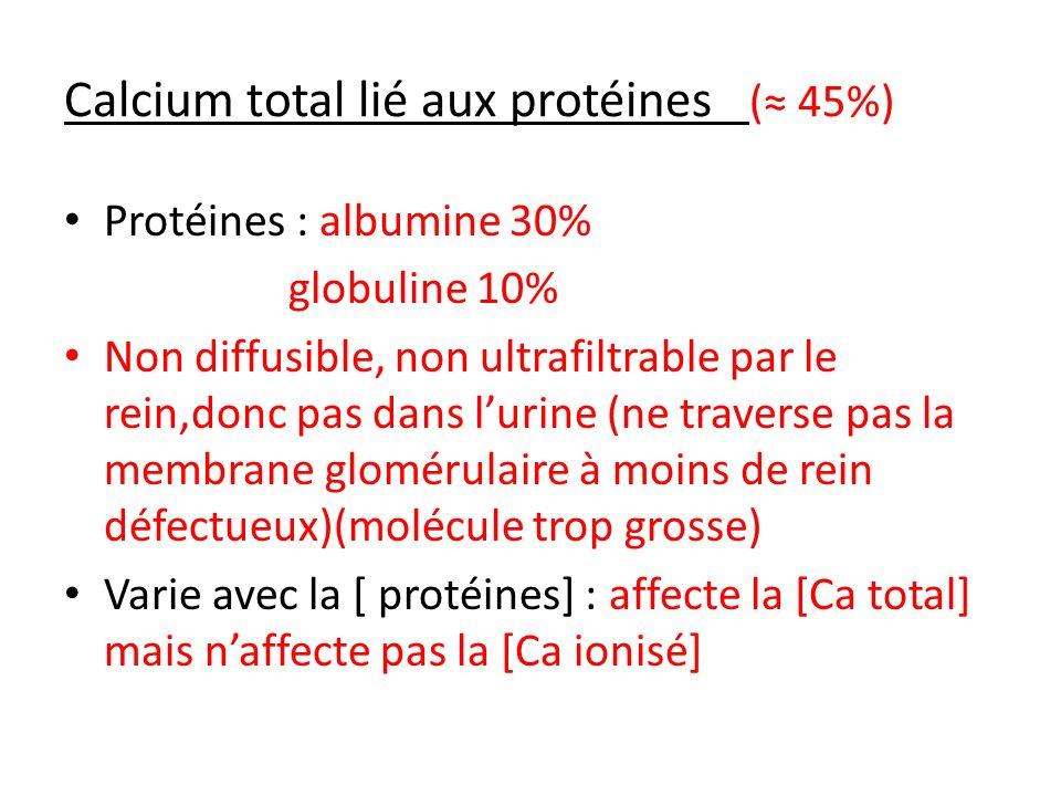 Calcium total lié à des molécules organiques ( 5%) complexé: HCO 3 -, SO 4 2-, HPO 4 2-, lactates - (COO - ) et citrates - (COO - ) Ultrafiltrable, diffusible (rein),donc on le retrouve dans lurine.