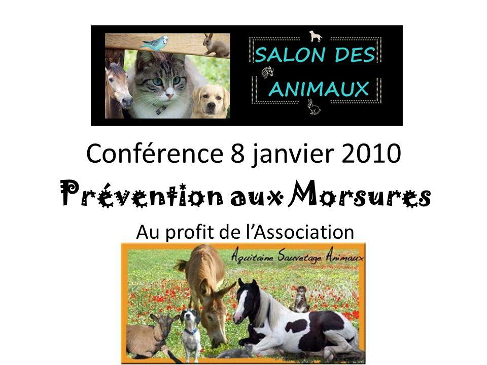 Conférence 8 janvier 2010 Prévention aux Morsures Au profit de lAssociation