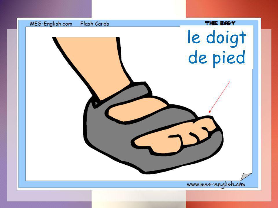 le doigt de pied