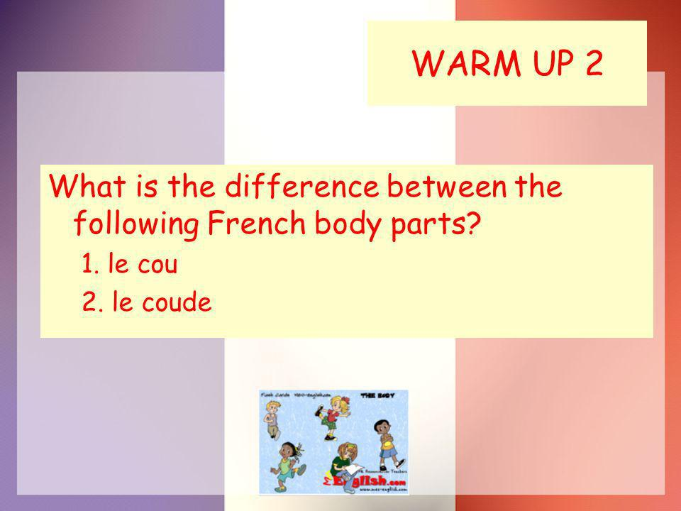 WARM UP 2 What is the difference between the following French body parts? 1. le cou 2. le coude