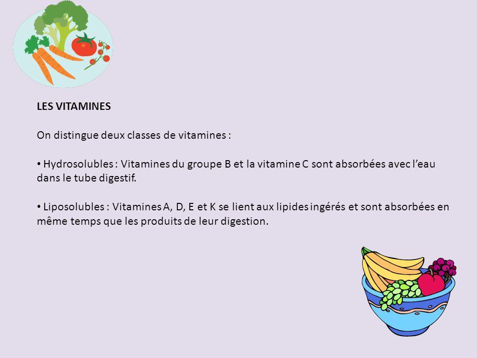 LES VITAMINES On distingue deux classes de vitamines : Hydrosolubles : Vitamines du groupe B et la vitamine C sont absorbées avec leau dans le tube digestif.