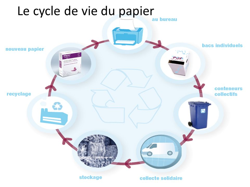 Le cycle de vie du papier