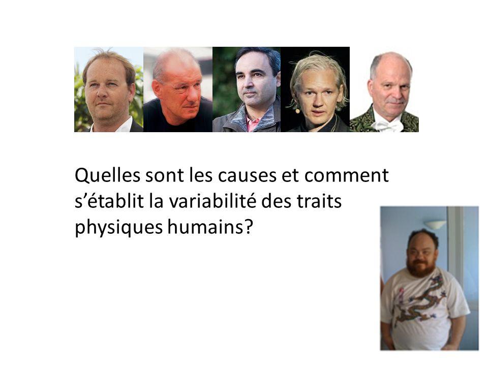 Quelles sont les causes et comment sétablit la variabilité des traits physiques humains?