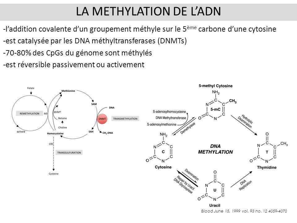 -laddition covalente dun groupement méthyle sur le 5 ème carbone dune cytosine -est catalysée par les DNA méthyltransferases (DNMTs) -70-80% des CpGs