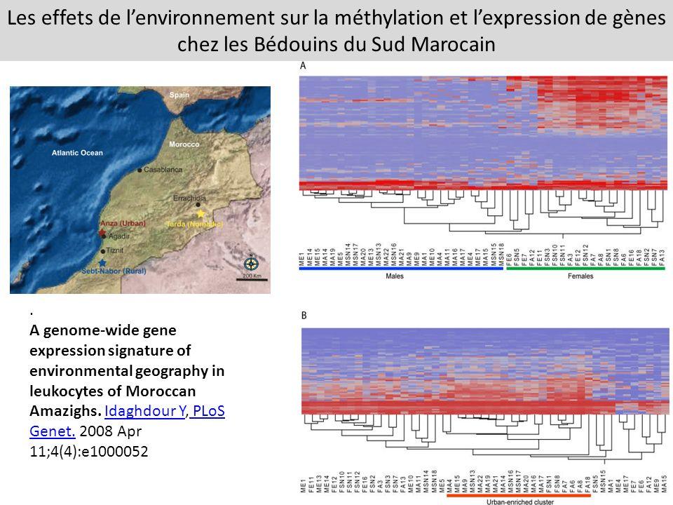 Les effets de lenvironnement sur la méthylation et lexpression de gènes chez les Bédouins du Sud Marocain. A genome-wide gene expression signature of