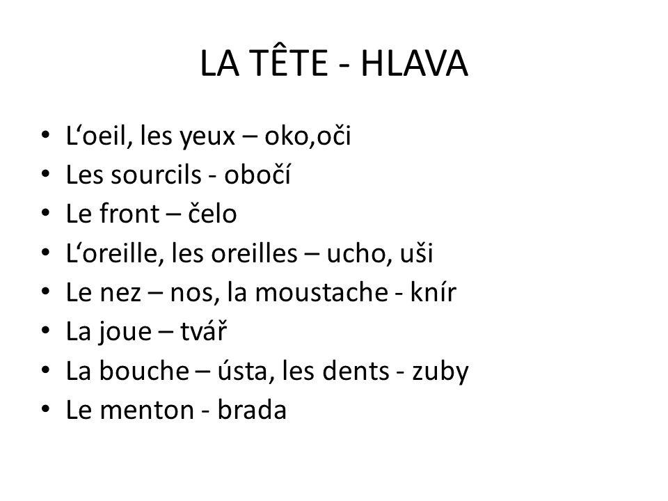 LES CHEVEUX Il/Elle est brun/e.– Je tmavovlasý/á.