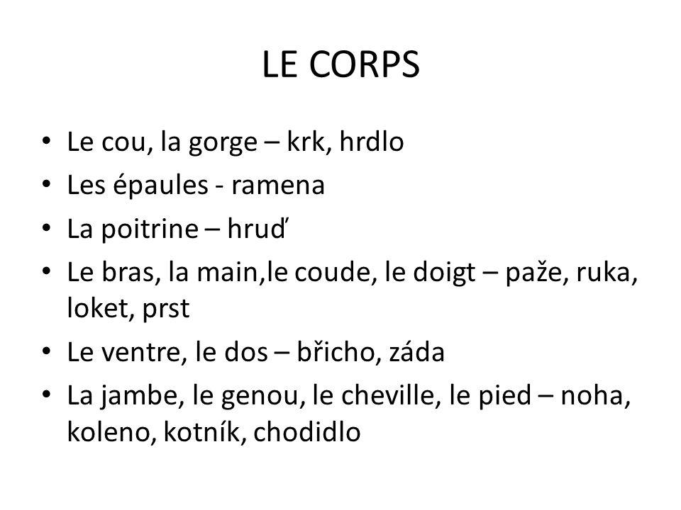 LE CORPS Le cou, la gorge – krk, hrdlo Les épaules - ramena La poitrine – hruď Le bras, la main,le coude, le doigt – paže, ruka, loket, prst Le ventre, le dos – břicho, záda La jambe, le genou, le cheville, le pied – noha, koleno, kotník, chodidlo