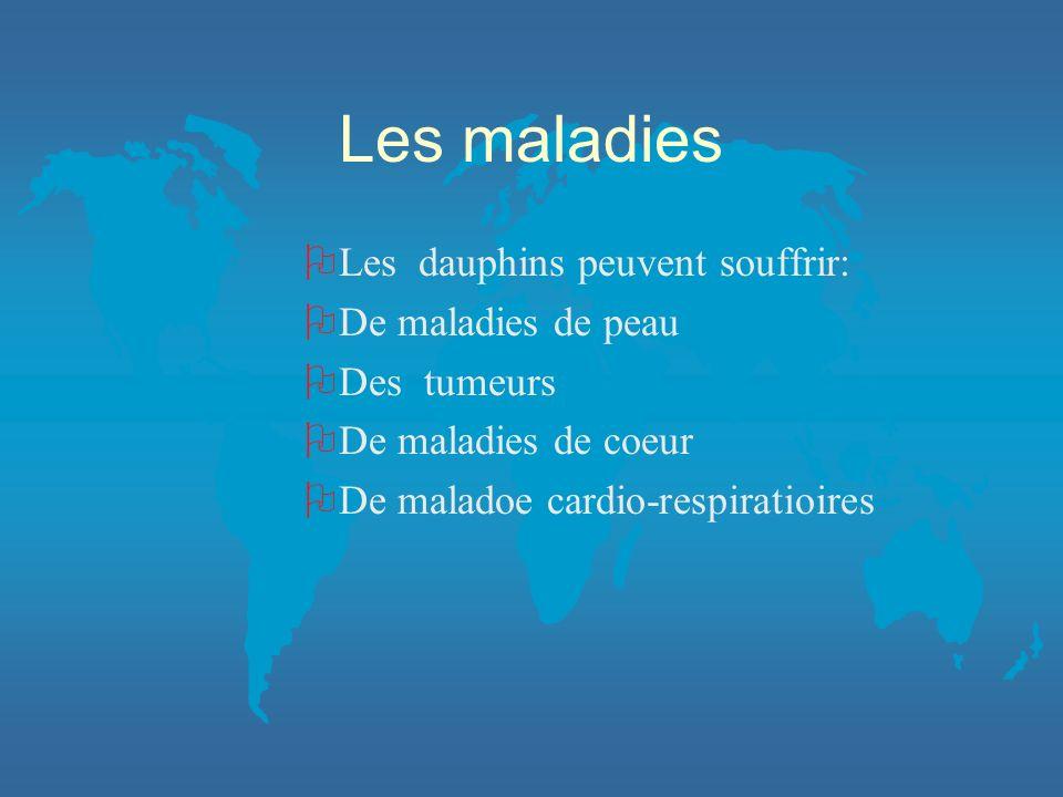 Les maladies OLes dauphins peuvent souffrir: ODe maladies de peau ODes tumeurs ODe maladies de coeur ODe maladoe cardio-respiratioires