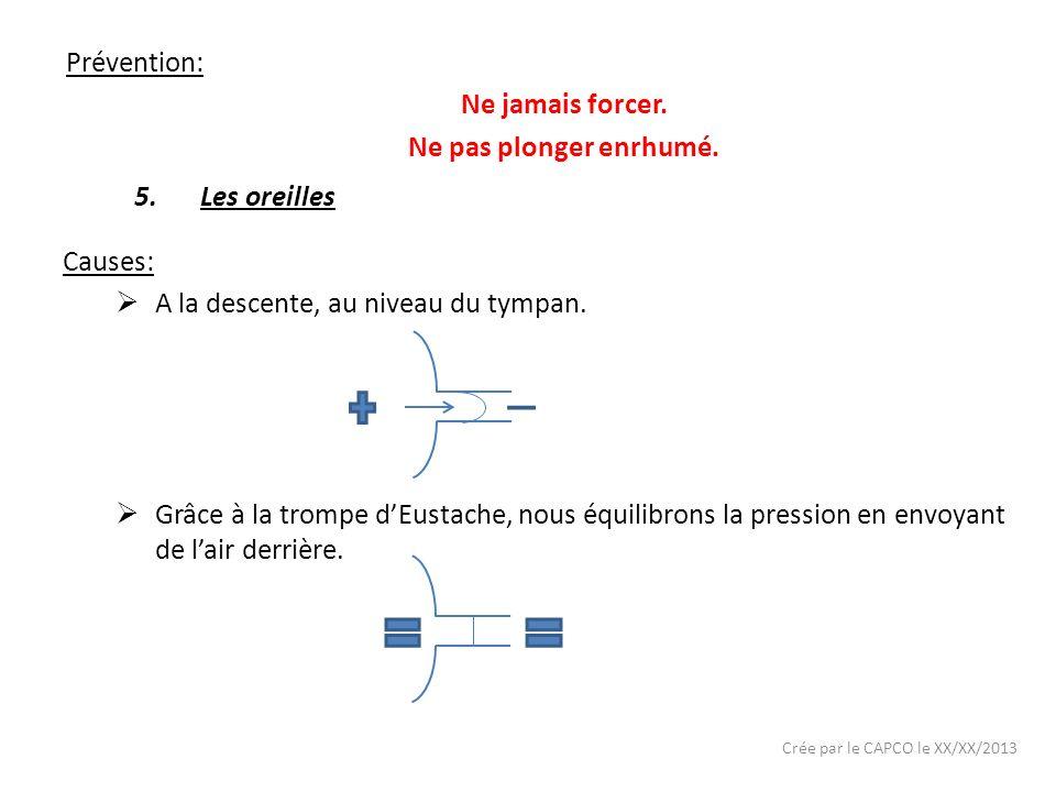 Crée par le CAPCO le XX/XX/2013 Prévention: Ne jamais forcer. Ne pas plonger enrhumé. 5.Les oreilles Causes: A la descente, au niveau du tympan. Grâce