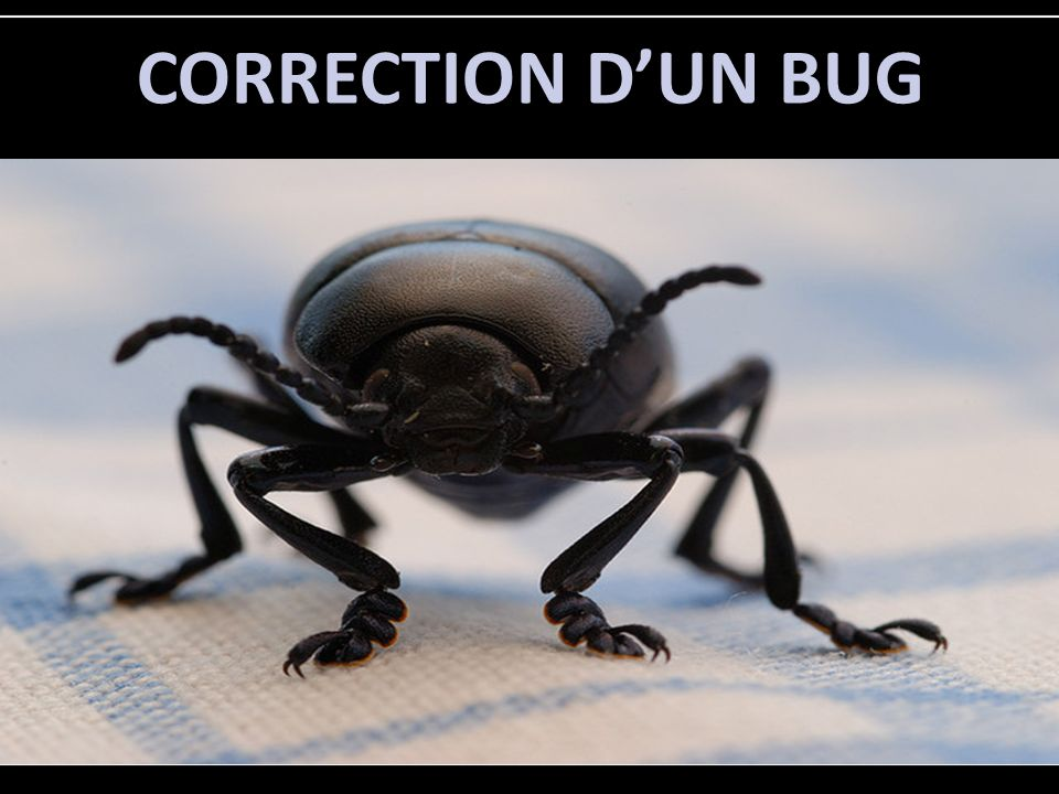 CORRECTION DUN BUG
