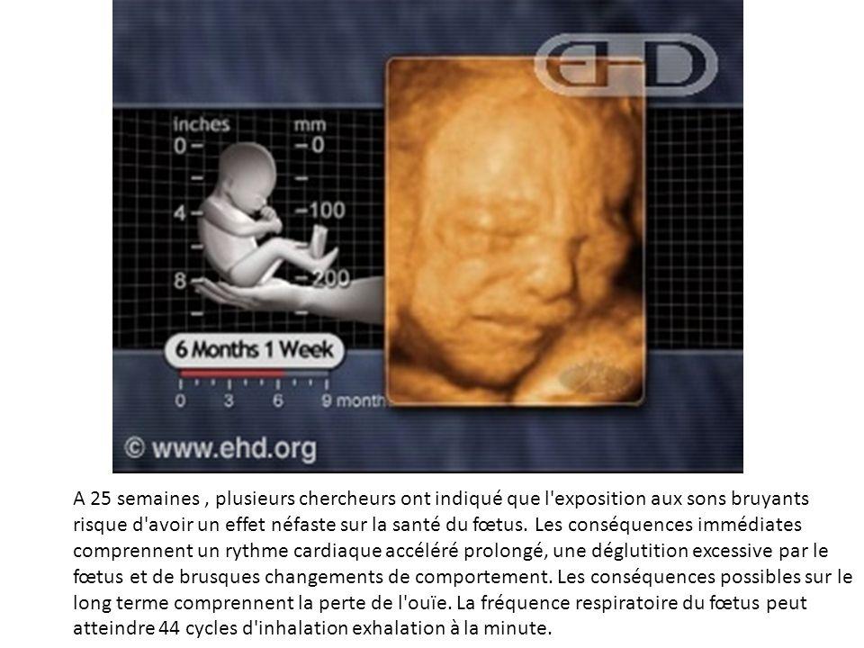 A 25 semaines, plusieurs chercheurs ont indiqué que l'exposition aux sons bruyants risque d'avoir un effet néfaste sur la santé du fœtus. Les conséque