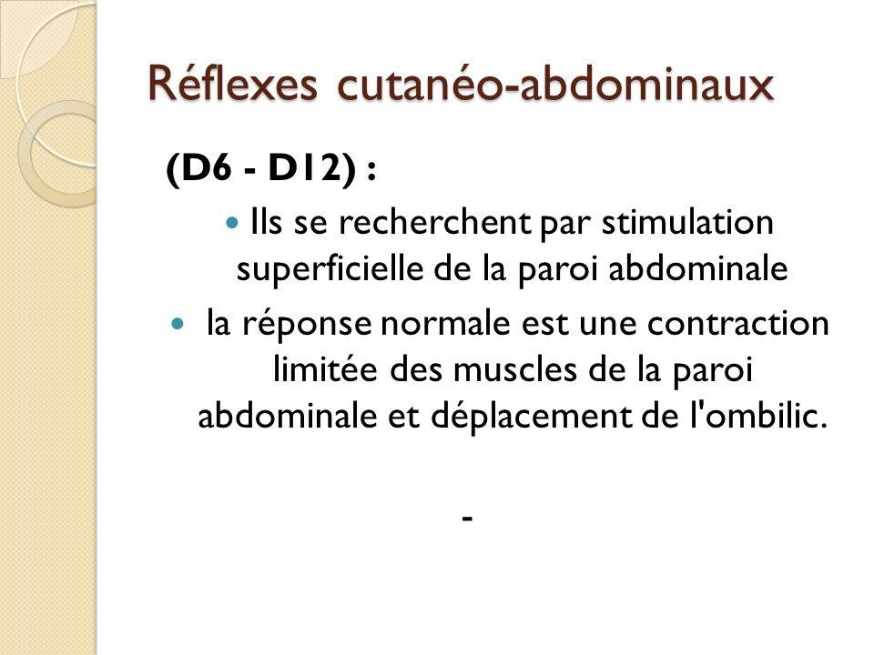 Réflexes cutanéo-abdominaux (D6 - D12) : Ils se recherchent par stimulation superficielle de la paroi abdominale la réponse normale est une contractio