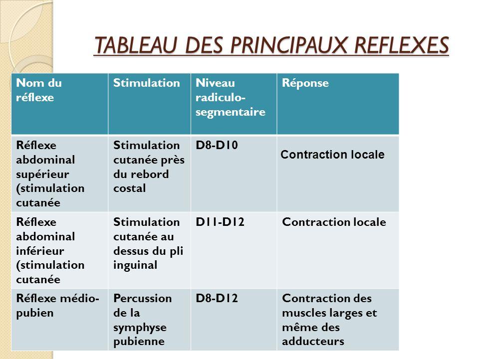 TABLEAU DES PRINCIPAUX REFLEXES Nom du réflexe StimulationNiveau radiculo- segmentaire Réponse Réflexe abdominal supérieur (stimulation cutanée Stimul