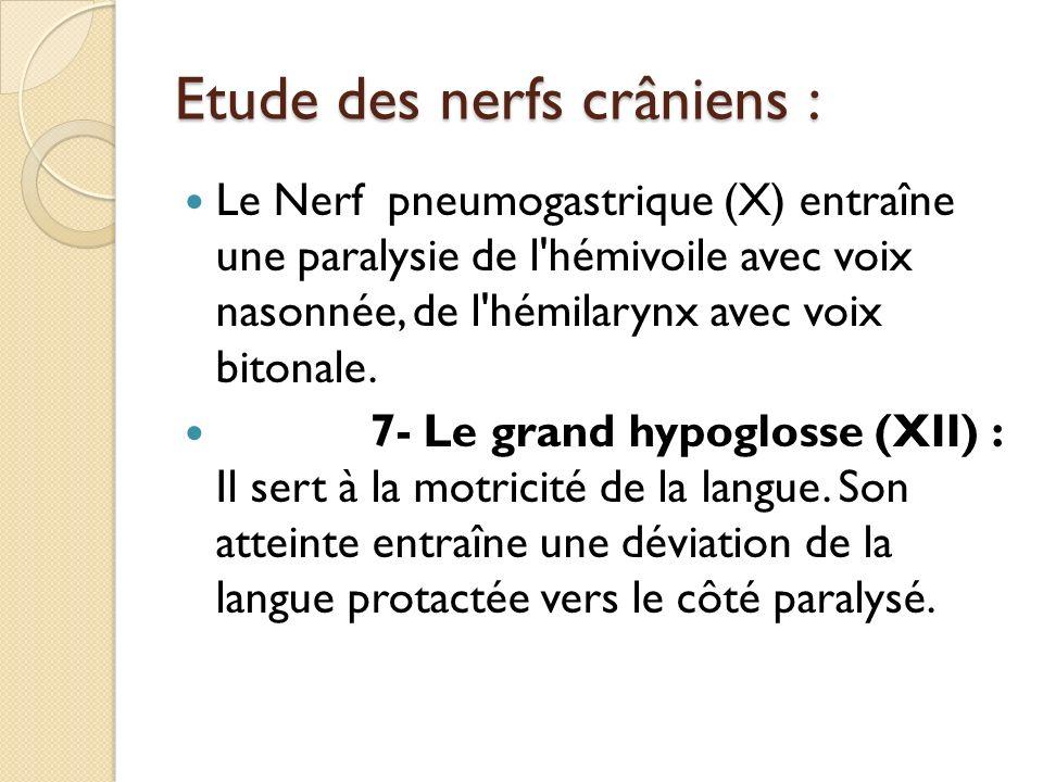 Etude des nerfs crâniens : Le Nerf pneumogastrique (X) entraîne une paralysie de l'hémivoile avec voix nasonnée, de l'hémilarynx avec voix bitonale. 7