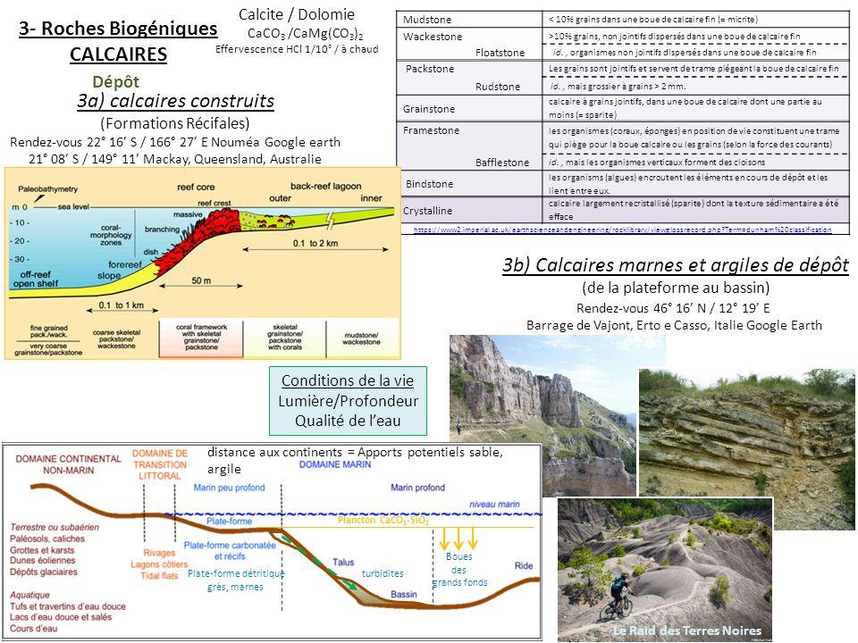 3- Roches Biogéniques CALCAIRES 3a) calcaires construits (Formations Récifales) Rendez-vous 22° 16 S / 166° 27 E Nouméa Google earth 21° 08 S / 149° 1